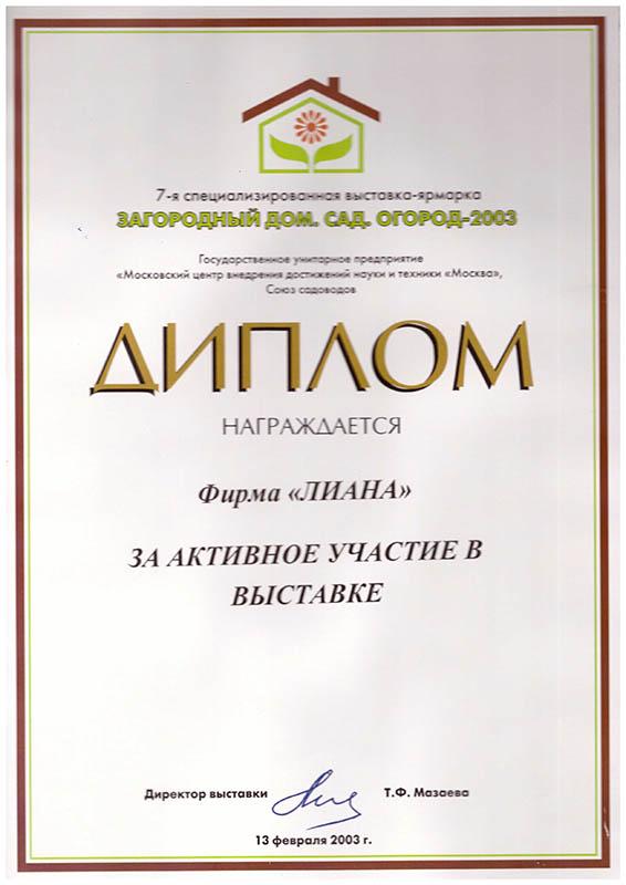 2003-zagorodnyiy-dom-sad-ogorod